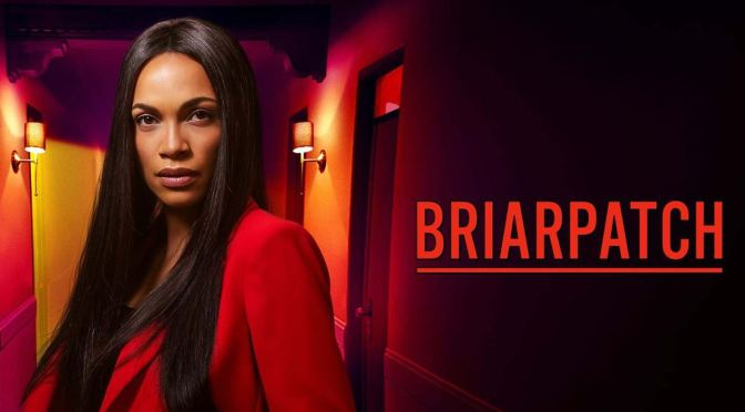 USA NETWORK CANCELA SU DRAMA 'BRIARPATCH'